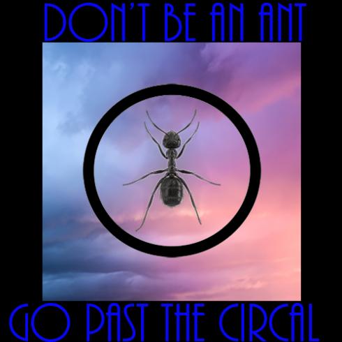 Ant circal